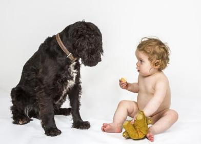 p hcomm_ray groome_you can have my rusk but not my teddy