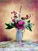 Summer Blooms Sue Champion 10